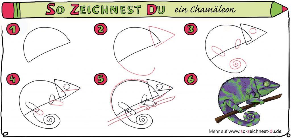 So zeichnest du ein Chamäleon Zeichenschule Schritt für Schrit